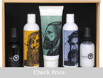 Best Beard Grooming Kits - Beardsley review