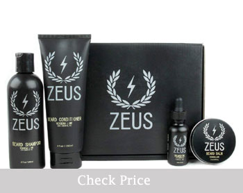 Zeus Everyday Beard Grooming Kit review
